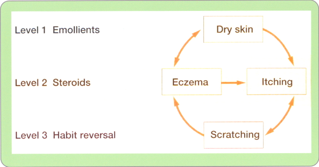 Twitter-with-The-Eczema-Solution-2